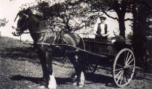Grandparents of Dorothy Pickett